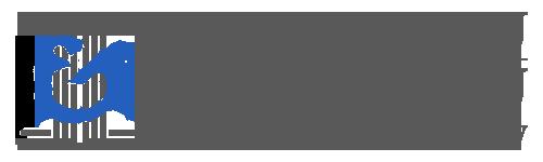 logo_grey